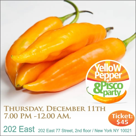 2014 AJI AMARILLO FLYER3